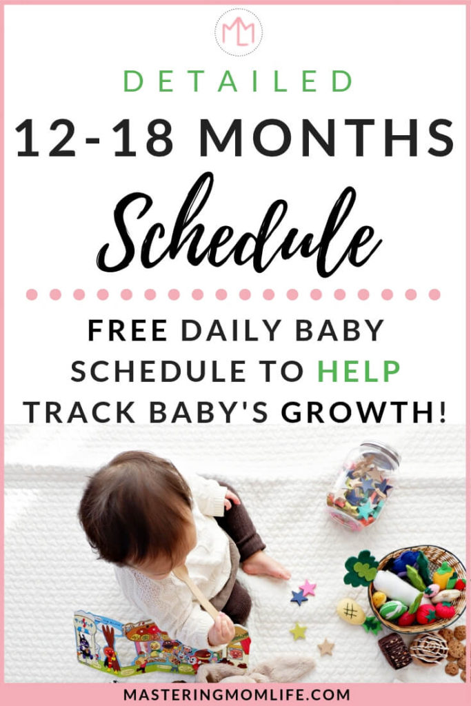 12-18 Month Baby Schedule | toddler schedule | daily schedule | free printable schedule | mom advice |baby tips | baby nap | baby feeding tips #momlife #baby