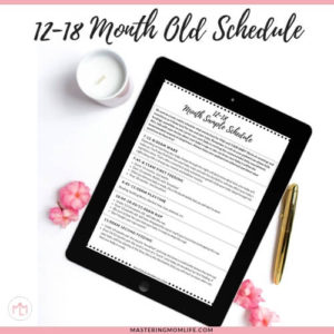 12-18 Month Baby Sample Schedule