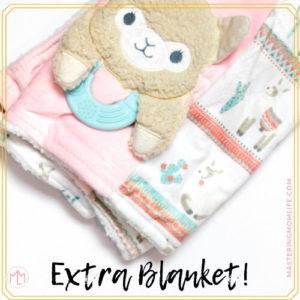 Diaper bag essentials   extra blanket