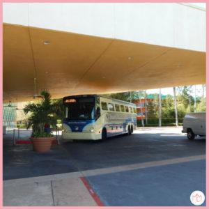 Resort Bus Transportation