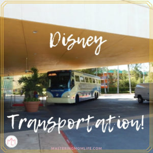 Disney On Site Transportation