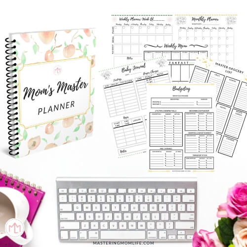 Mom's Master Planner | Ultimate Mom Planner
