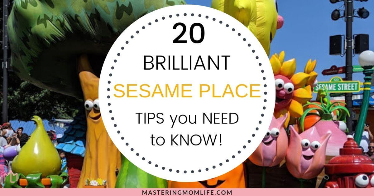 20 top sesame place tips